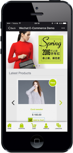 eCommerce Package_WeChat e-commerce_1
