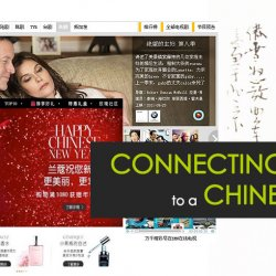 Website Localisation - marketing to china